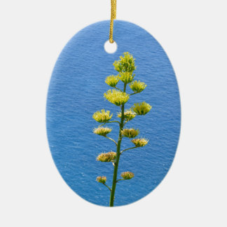 Inflorescence of an Agave plant Ceramic Ornament