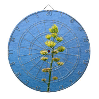 Inflorescence of an Agave plant Dartboard With Darts
