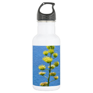 Inflorescence of an Agave plant Water Bottle