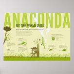 Infographic: Anaconda Posters