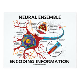 """Información de los nervios de la codificación del invitación 4.25"""" x 5.5"""""""