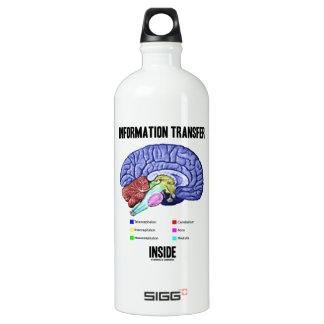 Information Transfer Inside (Brain Anatomy) Aluminum Water Bottle
