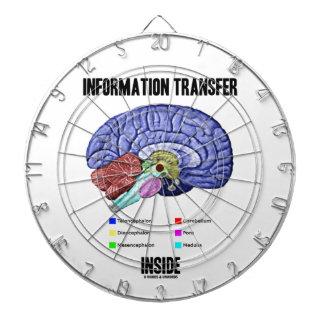 Information Transfer Inside (Brain Anatomy) Dart Board