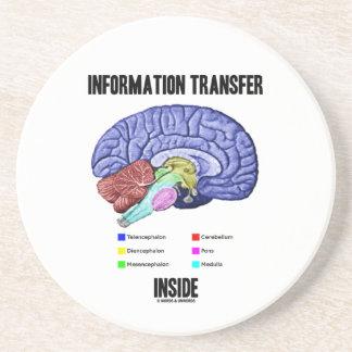 Information Transfer Inside (Brain Anatomy) Drink Coaster