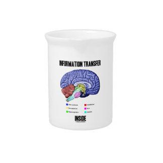 Information Transfer Inside (Brain Anatomy) Drink Pitchers