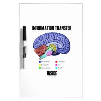 Information Transfer Inside (Brain Anatomy) Dry Erase Board
