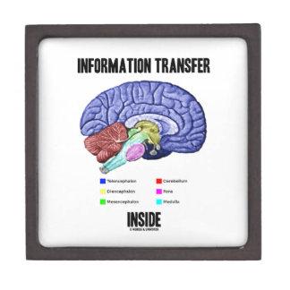 Information Transfer Inside (Brain Anatomy) Jewelry Box