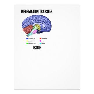 Information Transfer Inside (Brain Anatomy) Letterhead