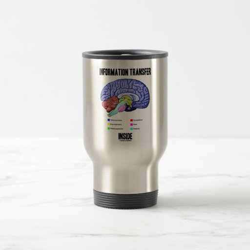 Information Transfer Inside (Brain Anatomy) 15 Oz Stainless Steel Travel Mug