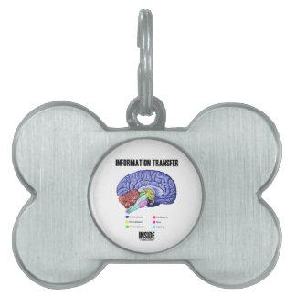 Information Transfer Inside (Brain Anatomy) Pet Name Tag