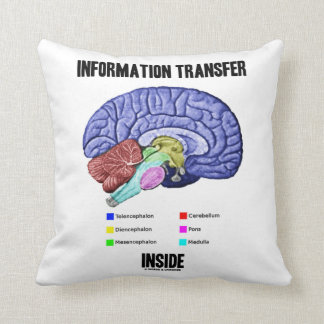 Information Transfer Inside (Brain Anatomy) Throw Pillow