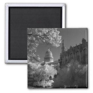 Infra red of Capitol building dome in Havana Magnet