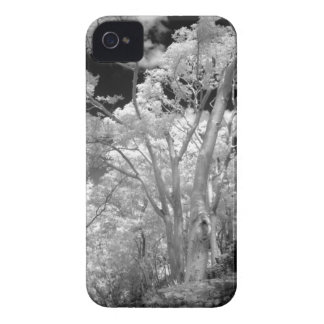 Infra red of trees buildings and trails in Las 2 iPhone 4 Cover