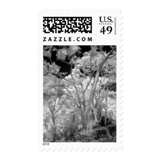 Infra red of trees buildings and trails in Las 2 Postage Stamp