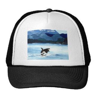 Infracción de la orca gorra
