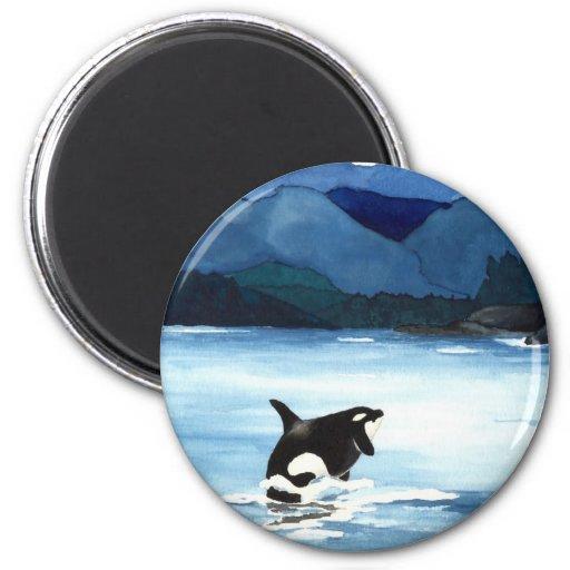 Infracción de la orca imanes de nevera