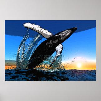 Infracción de la puesta del sol de la ballena joro póster