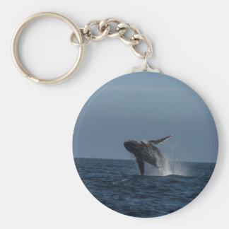 Infracción para los regalos de la ballena jorobada llavero redondo tipo pin