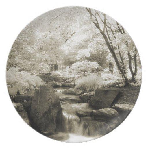 Infrared English Garden Plate