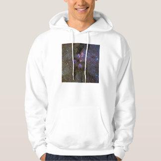 Infrared Image of the Cat's Paw Nebula NGC 6334 Hooded Sweatshirt