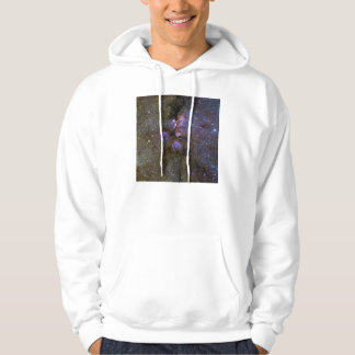 Infrared Image of the Cat's Paw Nebula NGC 6334 Hoodie