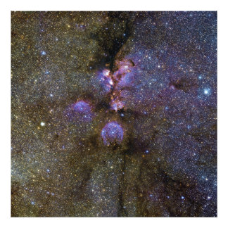 Infrared Image of the Cat's Paw Nebula NGC 6334 Photograph