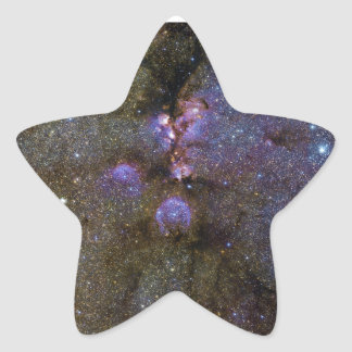 Infrared Image of the Cat's Paw Nebula NGC 6334 Star Sticker