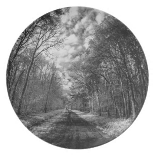 Infrared Landscape path through woods Dinner Plate