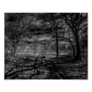 Infrared landscape shadows in the woods poster