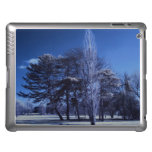 Infrared Landscape - Trees in a Park Case For iPad