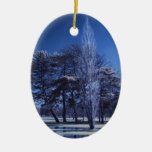 Infrared Landscape - Trees in a Park Christmas Ornaments