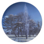 Infrared Landscape - Trees in a Park Party Plate