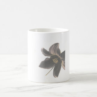 Infrared Lily cup