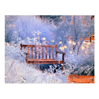Infrared Park Bench Postcard