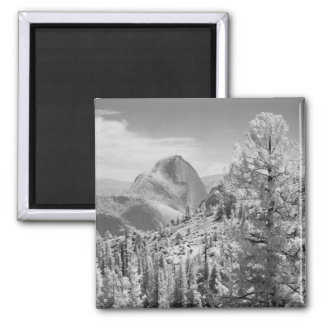Infrared photo in East side of Yosemite National 2 2 Inch Square Magnet