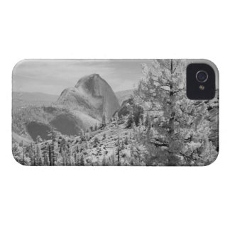 Infrared photo in East side of Yosemite National 2 iPhone 4 Case-Mate Case