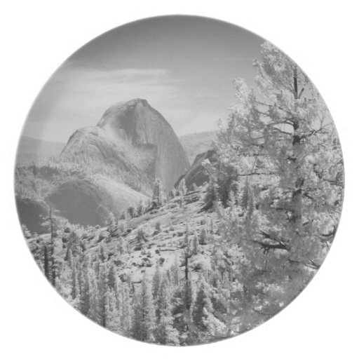 Infrared photo in East side of Yosemite National 2 Dinner Plate