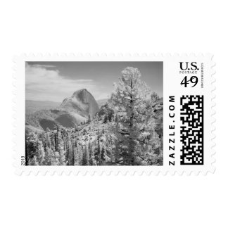 Infrared photo in East side of Yosemite National 2 Postage