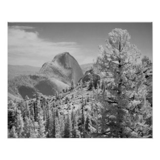 Infrared photo in East side of Yosemite National 2 Poster
