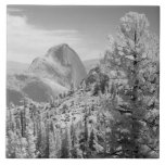 Infrared photo in East side of Yosemite National 2 Tile