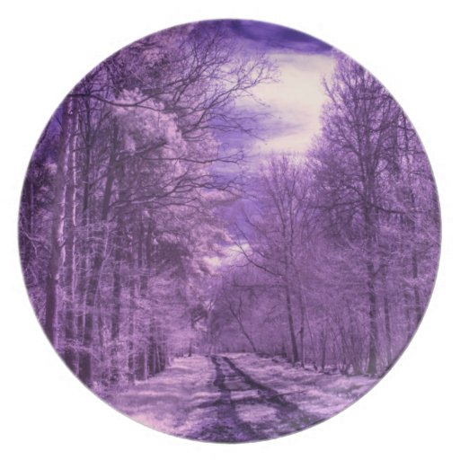 Infrared track through the woods party plate
