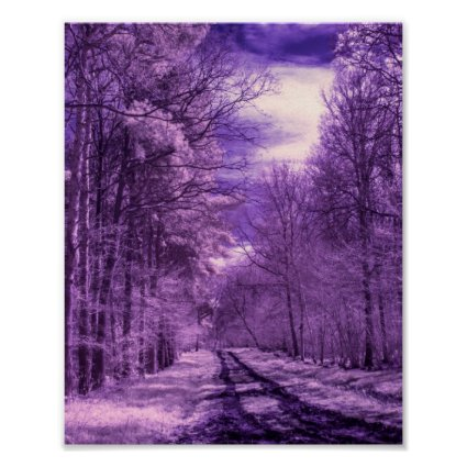 Infrared track through the woods print