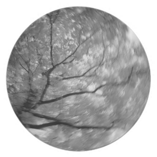Infrared Tree Abstract Party Plate