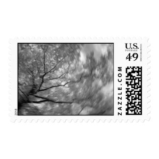 Infrared Tree Abstract Postage