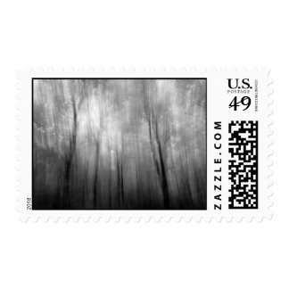 Infrared Woods Abstract Postage