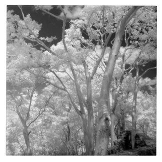 Infrarrojo de edificios y de rastros de los árbole azulejo cuadrado grande