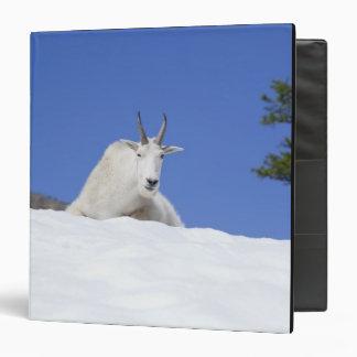 Ingalls Lake area, Billy Goat on snow Vinyl Binder