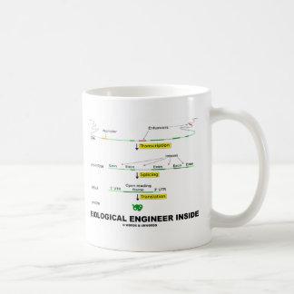 Ingeniero biológico dentro taza básica blanca