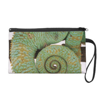 Inhabits dry mountainous areas. Indigenous Wristlet Purse