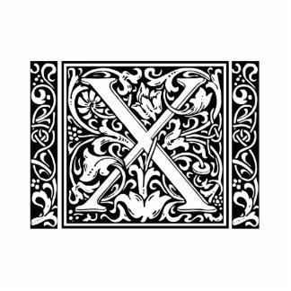 Inicial medieval del vintage del monograma de la imán fotoescultura